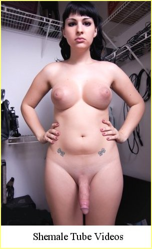 Transsexual shemale tranny tube
