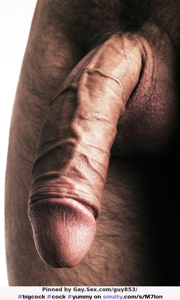 Porn galleries Gay men obsessed with upper body