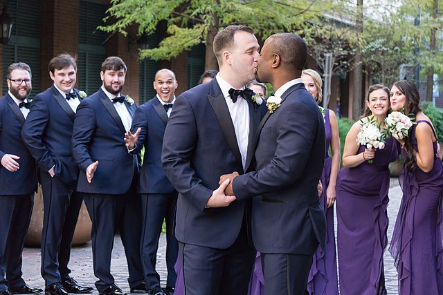 gay Against marriage article