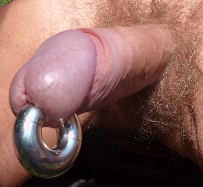 piercings gay Penis