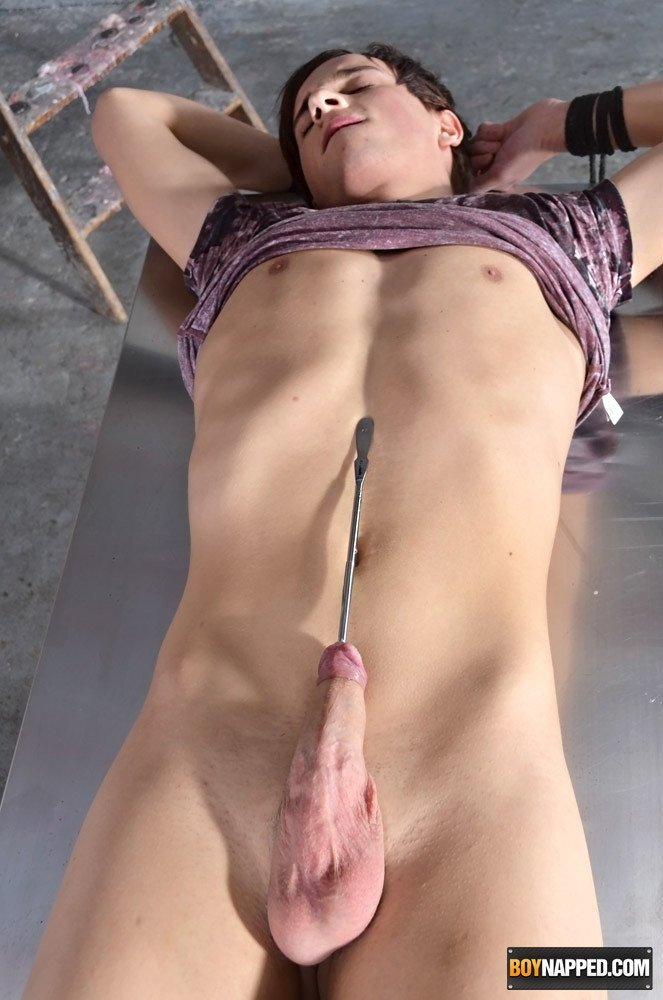 Adult archive Free full movey shemale fist anal