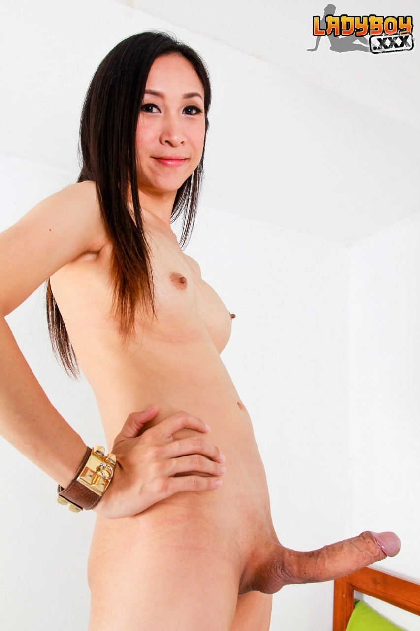 tranny galleries Thai